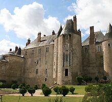 Meung sur Loire Castle by cedriccochez
