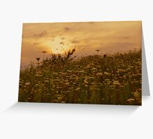 Come Away With Me Greeting Card