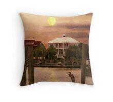 Evening Glow / South Carolina  / Throw Pillow