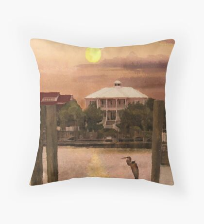 Evening Glow / South Carolina  / Throw Pillow
