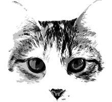 cat by RonAleksandra