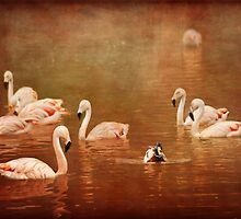 All this pink is making me 'quackers' by Lissywitch