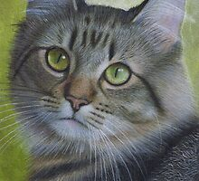 Portrait of a Tabby by Karen  Hull