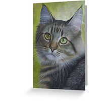 Portrait of a Tabby Greeting Card