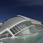 L´Hemisfèric - City of Arts and Sciences, Valencia by chalkie