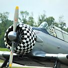 WW II training plane, Paradise by Linda Costello Hinchey