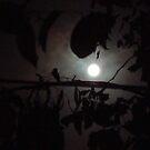 Blue Moon  by Anika  Zabeen