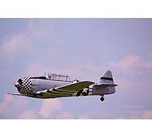 Paradise in flight WWII trainer (1) Photographic Print
