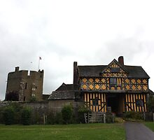 Stokesay Castle 1 by jakking