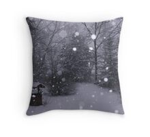 Winter Wonderland in the Appalachians Throw Pillow