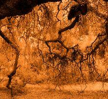Branches Cascading Downward in Sepia #2 by Ivana Redwine