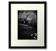 The soul of the Willow tree Framed Print