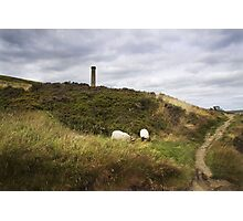 Holcombe Moor - Lancashire (England) Photographic Print