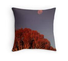 Tinderry Moon Throw Pillow