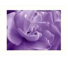 Shades of Gardenia Art Print
