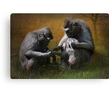 M is for.......monkeying around Canvas Print