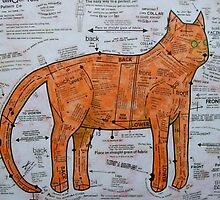 The Ginger Tom Pattern Cat by Bonnie coad