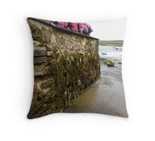Wet Path Throw Pillow