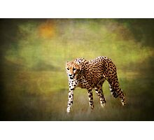 H is for........Hot Pursuit Photographic Print