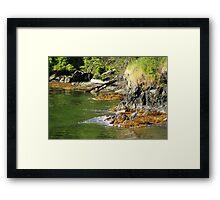 Tidal Sentinel Framed Print