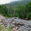 Gravel River - Hwy 17 - Ontario by loralea