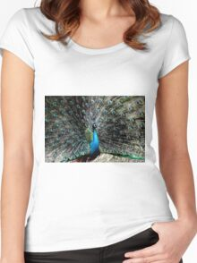 regal prince of birds Women's Fitted Scoop T-Shirt
