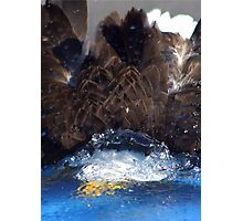 Manwes Eagle Dunk Photographic Print