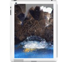 Manwes Eagle Dunk iPad Case/Skin