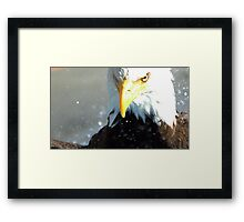 Don't Mess With Manwe Framed Print