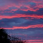 pinkish blue sunset by tego53