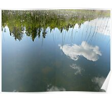 Topsy-Turvy Reflections on Pinkney Lake, Northern Sask,Canada Poster