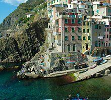Cinque Terre - Riomaggiore, Italy by Bob  Perkoski