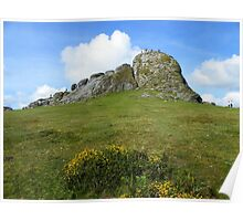 Dartmoor: Haytor, The Lion Rock Poster