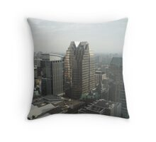 Looking South East Throw Pillow