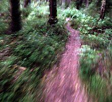Dead End Again by Ritva Ikonen