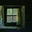 Window by Alan McMorris
