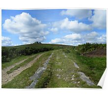 Dartmoor: The Granite Tramway Poster