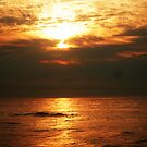 Assateaque Island Sunrise by lizwaltzes