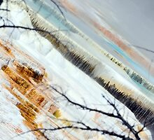Colours of Yellowstone by becmayr