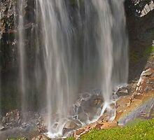 Below Narada Falls, Mt. Rainier National Park by Barb White