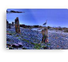 Dawn Patrol - Port Ludlow, Washington Metal Print