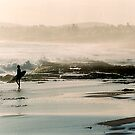 misty beach by jim painter