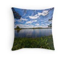 Seney Wildlife Reserve Throw Pillow