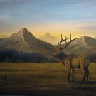 Sawtooth Sunrise by Rich Summers