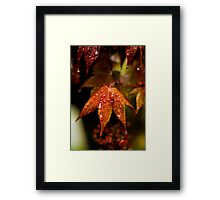When the Rain Comes Framed Print