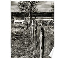 Down The Fence Line  2   ( BoneYard Series ) Poster