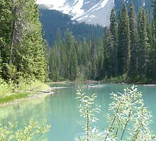Emerald Lake by cambray