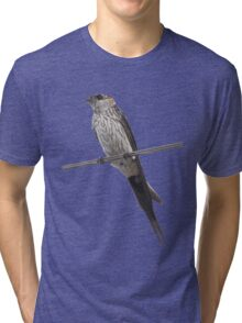 Red-Rumped Swallow Vector Isolated Against Blue Tri-blend T-Shirt