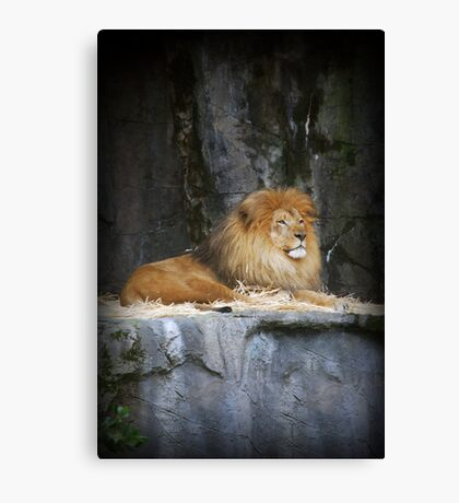 On His Throne Canvas Print