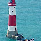 Boat Trip to Beachy Head Lighthouse by Colin  Williams Photography